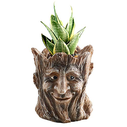 Head Unique - Anpatio Succulent Plant Pots Resin Tree Man Groot Planter Cactus Bonsai Flower Pots Pen Holder with Drainage Hole Perfect Gift Idea for Birthday 5.5 inch
