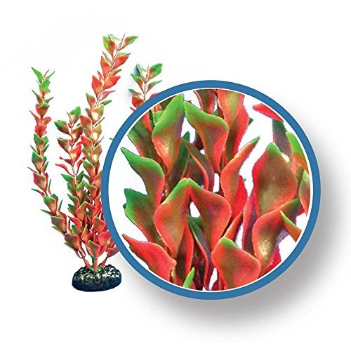 Weco Freshwater Pro Series Ludwigia Ornament, 30