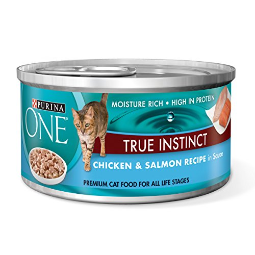 Purina ONE True Instinct Chicken & Salmon Recipe in Sauce We