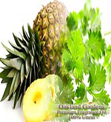 PINEAPPLE CILANTRO Fragrance Oil refreshing product image