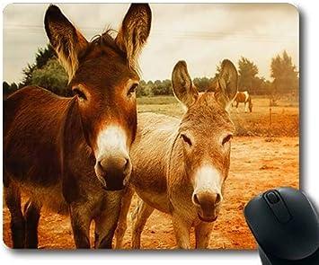 Cojín de ratón de la Carrera de Caballos, Animales de la fotografía Animal de la Agricultura, Estera del ratón del Caballo