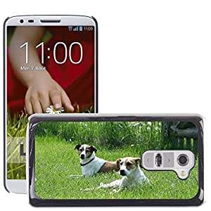 Super Stella Slim PC Hard Case Cover Skin Armor Shell Protection // M00107391 Dogs Pets Animals White Brown // LG G2 D800 D802 D802TA D803 VS980 LS980