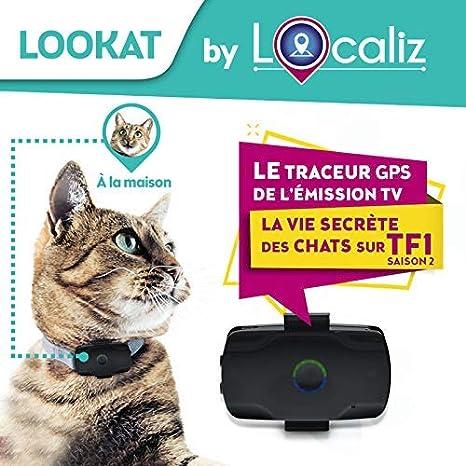 LOCALIZ Lookat localizador GPS para Gato y Perro pequeño ...