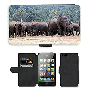 Super Stella Cell Phone Card Slot PU Leather Wallet Case // M00148168 Elephant Orphanage Elephants // Apple iPhone 4 4S 4G