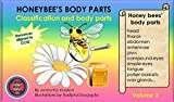 Honeybee's Body Parts Volume 3: Honey bee information, vocabulary, children's books, resources & worksheets aligned to Common Core Standards on teachers ... (Honey bee Series) (Honeybee Series)