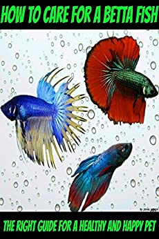 How to care for a betta fish the right guide for a for Betta fish care guide