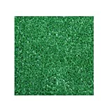 9'x12' Standard Sizes - GREEN - ECONOMY TURF / ARTIFICIAL GRASS |Light Weight Outdoor Rug - EASY Maintenance - Just Hose Off & Dry! - 8 Colors to Choose From