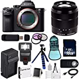 Sony Alpha a7S II a7S Mark II a7SII ILCE7SM2/B Mirrorless Digital Camera (International Model no Warranty) + Sony E-Mount SEL 18-55mm Zoom Lens (Black) + 49mm Filter Kit 6AVE Bundle 6