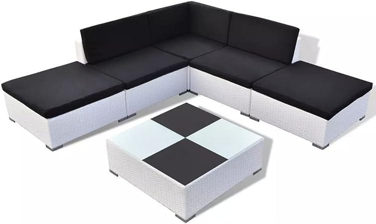vidaXL Conjunto de Muebles de Jardín 15 Piezas Poli Ratán Blanco Cojines Negros: Amazon.es: Hogar