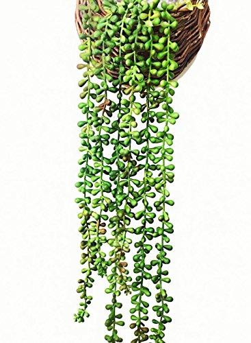 Ahvoler Artificial Succulent Plants String of Pearls 28 Hanging Basketplan Lover Tears Plants (Green 1 pc)