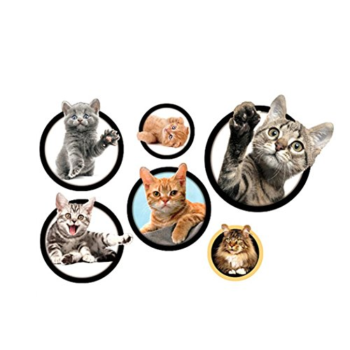 Colorido 5Pcs/Sheet 3D Removable Kitten Cat Wall Sticker Decal Kid's Bedroom Decor - Cat Kittens Pictures