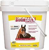 Durvet Biotin Daily Hoof Supplement for Horses