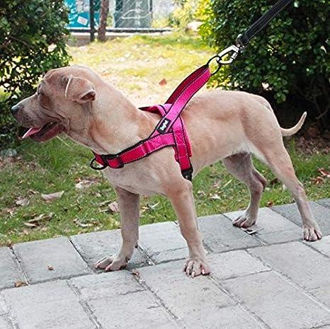 PPPETS Arnés para Perros fácil de Poner y Quitar, Ajustable ...