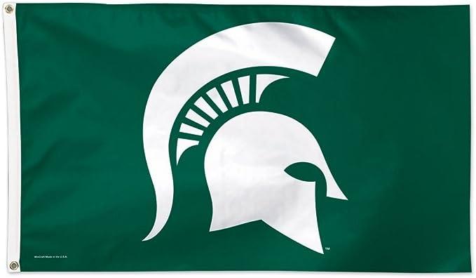 WinCraft NCAA Auburn University 01912115 Deluxe Flag 3 x 5