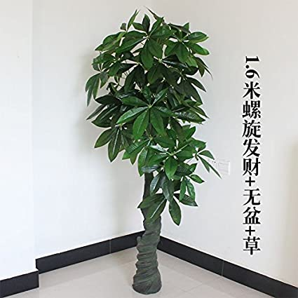 Amazon.com: Sproud Fake Tree Pot Simulation Money Tree Hotel ...