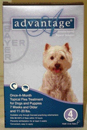 Advantage – Teal for Dogs 11-20 lbs 4pk, My Pet Supplies