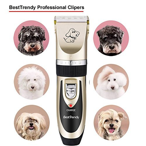 BESTTRENDY Professional Cat Dog Clippers, Low Noise Rechargeable Cordless Electric Pet Grooming Kit Tool Hair Trimmer Razor Blades with Combs, Scissor (Gold+Black)