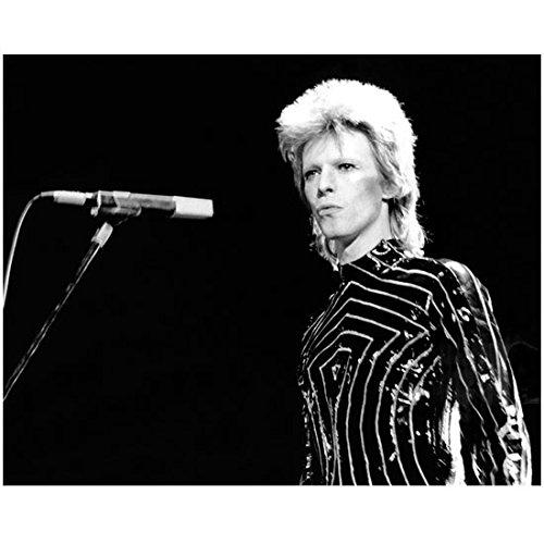 David Bowie 8inch x 10inch Photo Labyrinth Basquiat