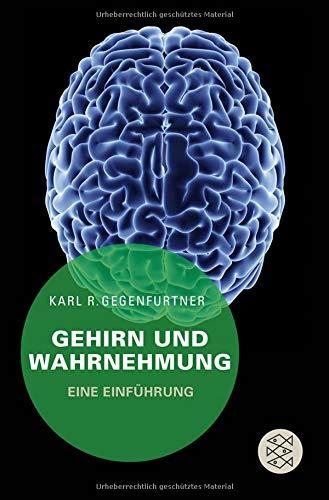 Gehirn und Wahrnehmung: Eine Einführung