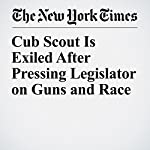 Cub Scout Is Exiled After Pressing Legislator on Guns and Race | Christine Hauser