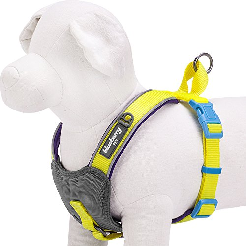Blueberry Pet 4 Colors Soft & Comfy Summer Hope 3M Reflective Padded Dog Harness Vest, Chest Girth 18.5 - 20.8, Neck 17.5, Fluorescent Yellow, S/M