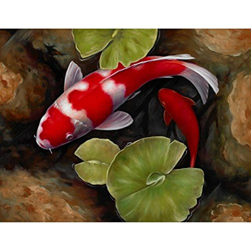 24x34cm Full Square Red Koi Fish Lotus Feng Shui Animal Land