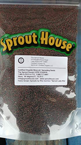 The Sprout House Certified Organic Non-GMO Sprouting Seeds Broccoli 1 Pound (Best Broccoli Seeds For Sprouting)