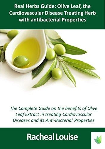 real-herbs-guide-olive-leaf-the-cardiovascular-disease-treating-herb-with-antibacterial-properties