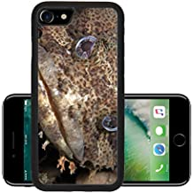 Luxlady Premium Apple iPhone 7 Aluminum Backplate Bumper Snap Case iPhone7 IMAGE ID: 20154383 Close up of a muppet like Oyster Toadfish