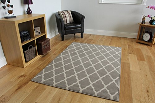 Milan Soft Touch Classic Grey Trellis Print Rug 1799-H22 - 5'3