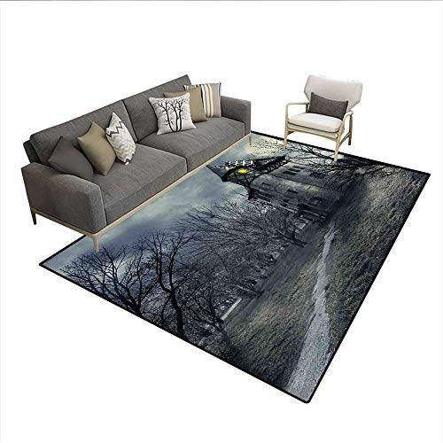 (Carpet,Halloween Design with Gothic Haunted House Dark Sky and Leafless Trees Spooky Theme,Area Silky Smooth Rugs,Teal)