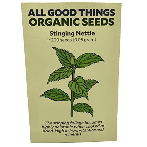 (Stinging Nettle Seeds (~200) by All Good Things Organic Seeds: Certified Organic, Non-GMO, Heirloom, Open Pollinated Seeds from the United States)