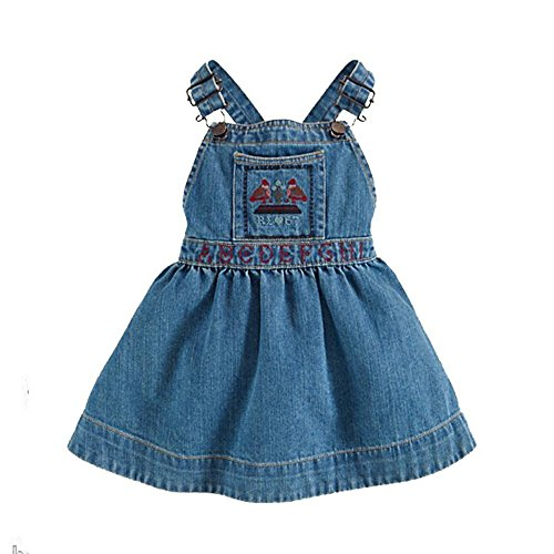 Ralph Lauren Polo Girls Sampler Embroidered Denim Overall Jumper Dress (9 Months)