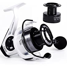 Spinning Fishing Reel,13+1 BBs Light and Smooth,Powerful Carbon Fiber Drag,2000 to 5000 Series with 2 Spools,Left/Right Interchangeable Spinning Reels Saltwater