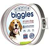 Dog Flea Treatment Collar - Safe and Effective Pet Collar Pest Control Collars with Essential Oil Prevention for Dogs and Puppies Dog Treatment 25 inches 8 Months Protection One Size Fits ALL