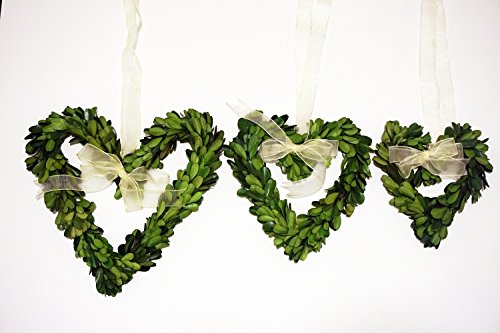 Preserved Boxwood Heart Mini Wreath Set by Tradingsmith (Mini Heart Wreath)