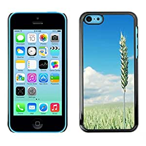 Paccase / SLIM PC / Aliminium Casa Carcasa Funda Case Cover - Nature Beautiful Forrest Green 110 - Apple Iphone 5C