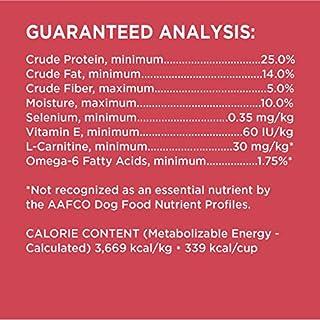 IAMS PROACTIVE HEALTH Adult High Protein Dry Dog Food with Lamb and Rice, 38.5 lb. Bag