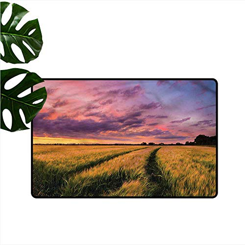 Outdoor Doormat Rustic Crop Land at Dramatic Sunset Hard and wear Resistant W31 xL47 ()