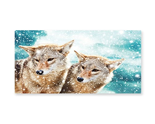 Lunarable Animal Wall Art, Two Coyote Wolf Partners under Snowy Winter Day Wild Creatures Mammal Picture, Gloss Aluminium Modern Metal Artwork for Wall Decor, 23.5 W X 11.6 L Inches, (Two Partner Costumes)