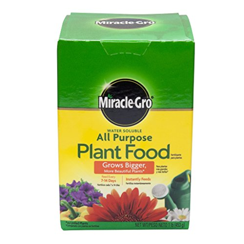 Miracle Gro 160101 1 Lb Water Soluble All Purpose Plant Food 24-8-16 (Water Soluble Plant Purpose All)
