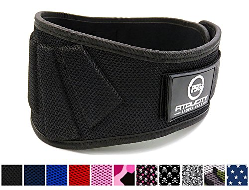 Fitplicity Weight Lifting Belt (Black, Small)