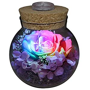 Preserved Real Roses Colorful Mood Light Wishing Bottle,Eternal Rose,Never Withered Flowers Bedroom Party Table Decor, Christmas Decorations,a Gifts Women