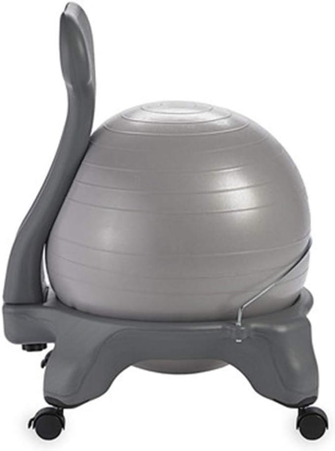 Wly&home Silla de balón de Equilibrio - Estabilidad de Ejercicio ...