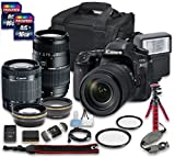 Canon EOS 80D DSLR Camera Bundle with Canon EF-S 18-55mm f/3.5-5.6 IS STM Lens + Tamron Zoom Telephoto AF 70-300mm f/4-5.6 Macro Autofocus Lens + 2 PC 16 GB Memory Card + Camera Case For Sale