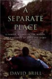 A Separate Place, David Brill, 0525944974