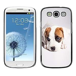TopCaseStore / la caja del caucho duro de la cubierta de protección de la piel - Cute Cool Puppy Dog - Samsung Galaxy S3 I9300