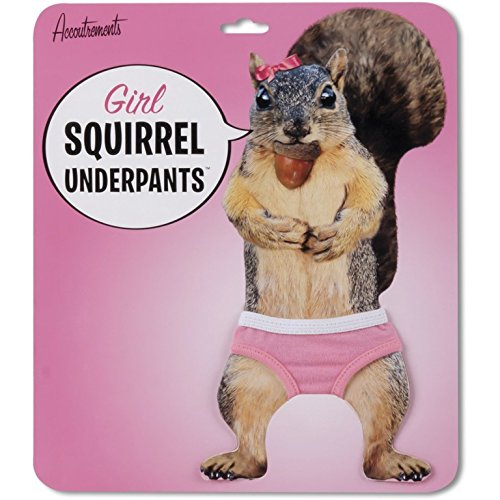 Accoutrements 12079 Girl Squirrel Underpants product image