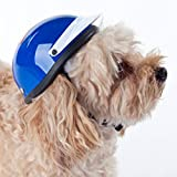 Helmet for Dogs, Cats and All Small Pets, Pet