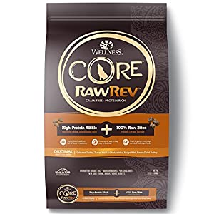 Wellness Natural Pet Food Core Dry Original Turkey & Chicken with Freeze Dried Turkey Dog Food, 10 lb